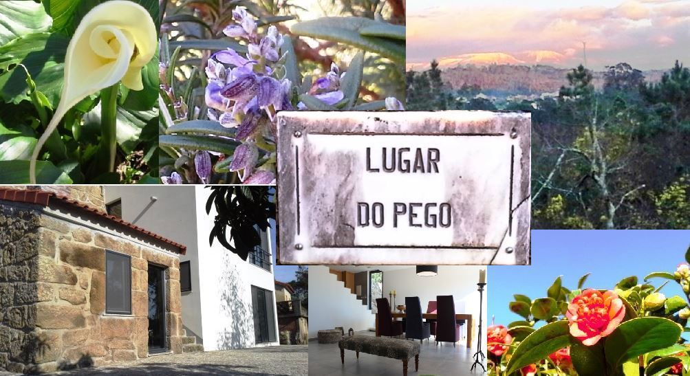BedandBreakfast in Central Portugal